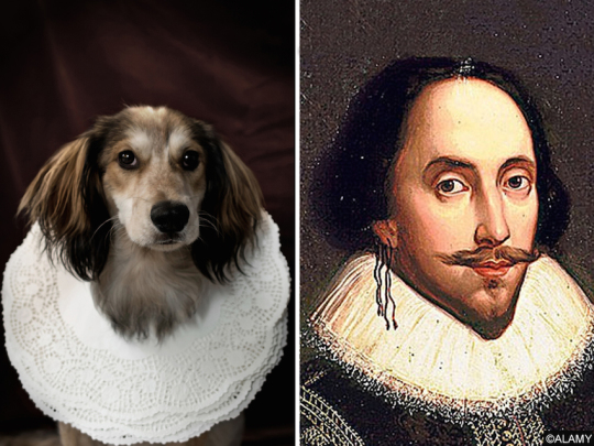 Dogs-and-famous-writers-William-Shakespeare-540x405